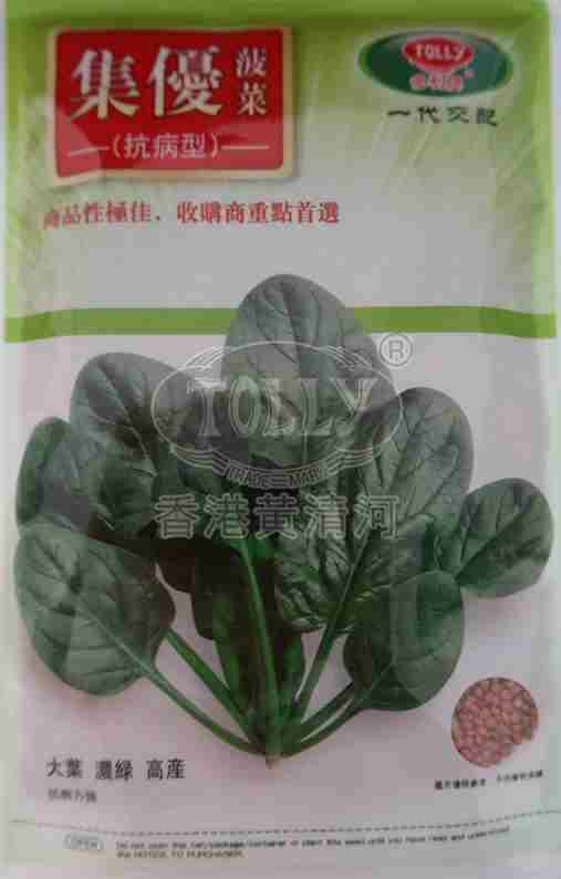 集优菠菜――菠菜